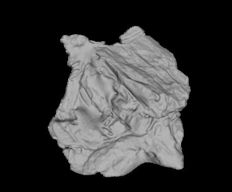Image of BIF-glomerate rendering.