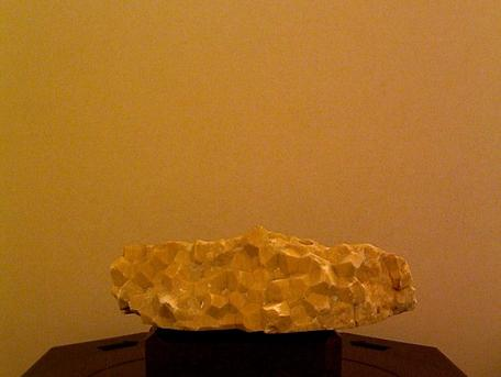 Image of original Brachiopod cementstone specimen.