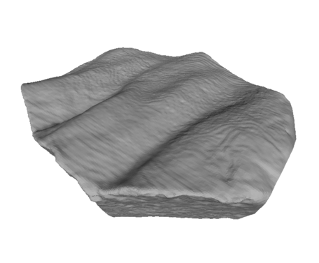 Image of Rippled Sandstone Polygon rendering.