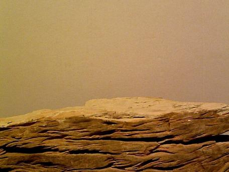 Image of original Sandstone Concretion specimen.